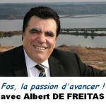 www.defreitas2008.fr